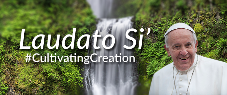 Laudato Si' — resources for new encyclical